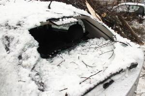 Śnieg łamał konary, uszkodzone samochody