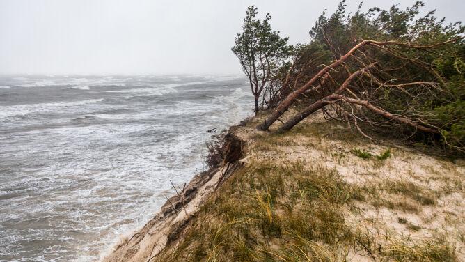 Pogoda na dziś: dzień pod znakiem zachmurzenia i silnego wiatru