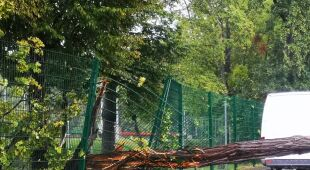 Skutki gwałtownej pogody w Oławie (fot.: Oława24)